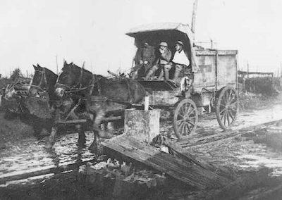 horse-ambulance1