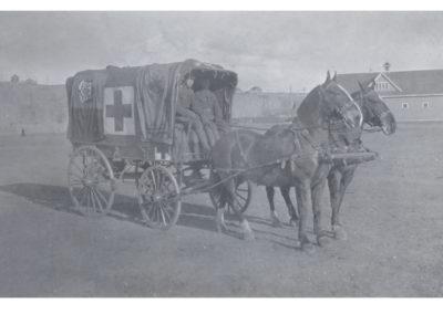 horse-ambulance2